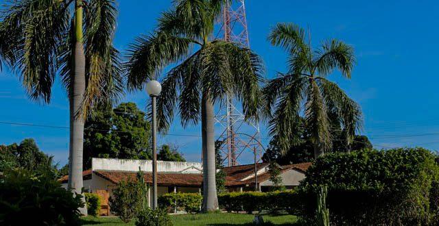 Lavandeira Tocantins fonte: lavandeira.to.gov.br
